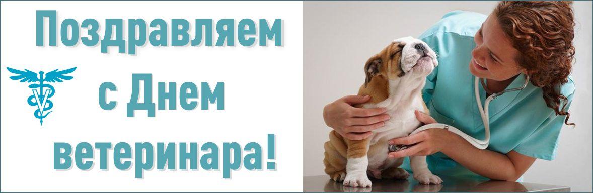 День ветеринара открытки