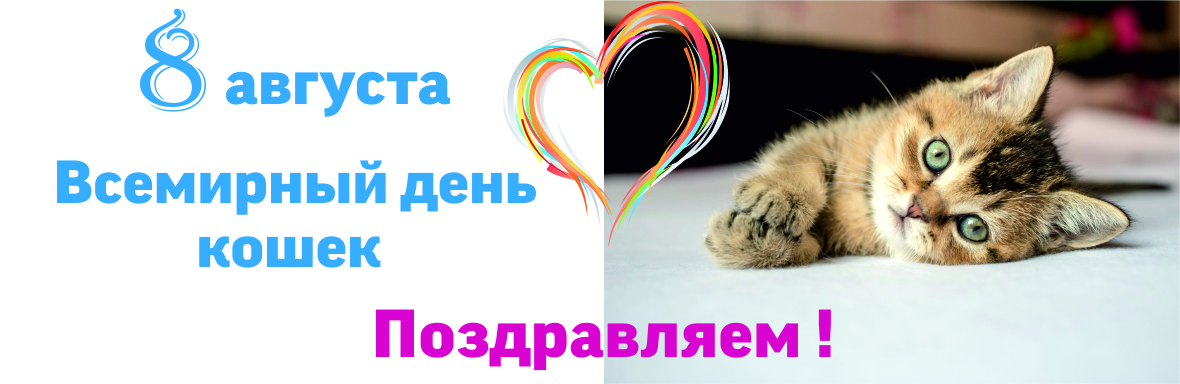 стала поздравления с всемирным днем кошек 8 августа предпочитает